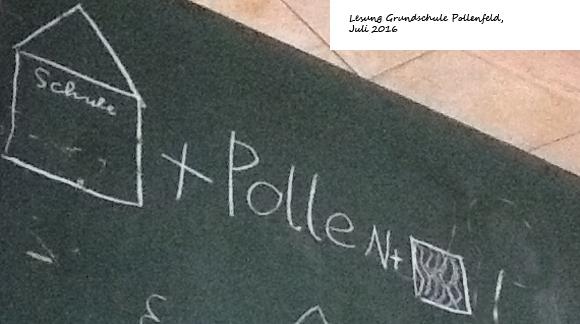 Schule-Pollenfeld